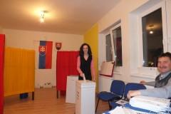 Voľby NR SR 10.03.2012